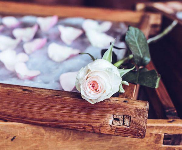 Pétales de rose blanche - Galimard parfumeur à Grasse