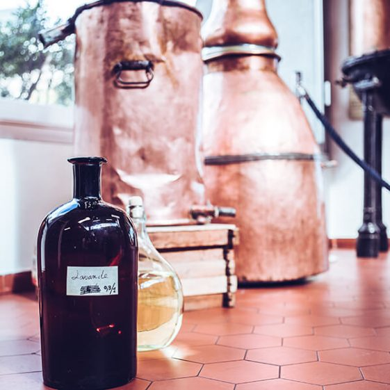 Flacon ancien de lavande devant un alambic - Galimard parfumeur à Grasse